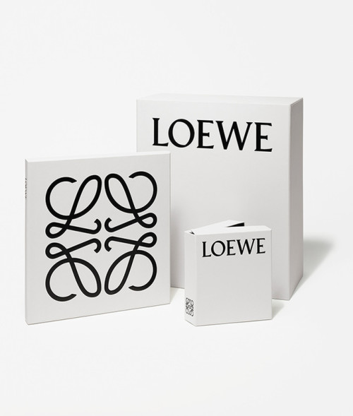 Loewe-PaperBag_Capture_046